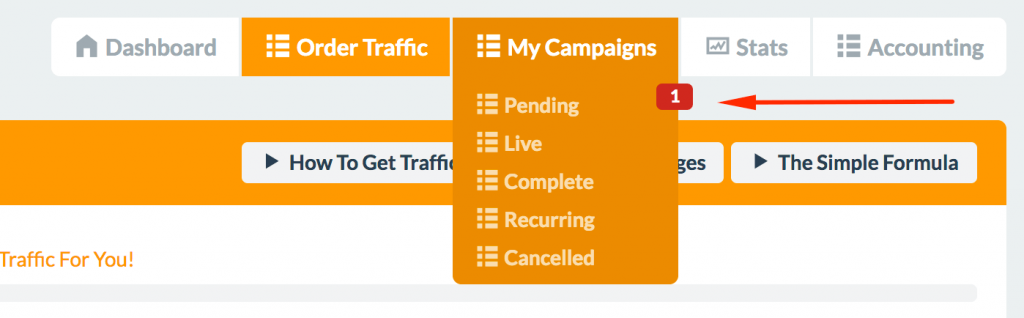 Traffic For Me 13